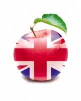 Центр разговорного английского logo