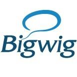 Языковой центр Bigwig logo