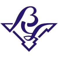 Волжский университет имени В.Н. Татищева logo