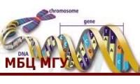Международный учебно-научный биотехнологический центр МГУ им. М.В.Ломоносова logo