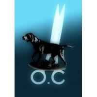 Школа груминга Ольги Каруана logo