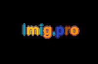 Imig pro лого