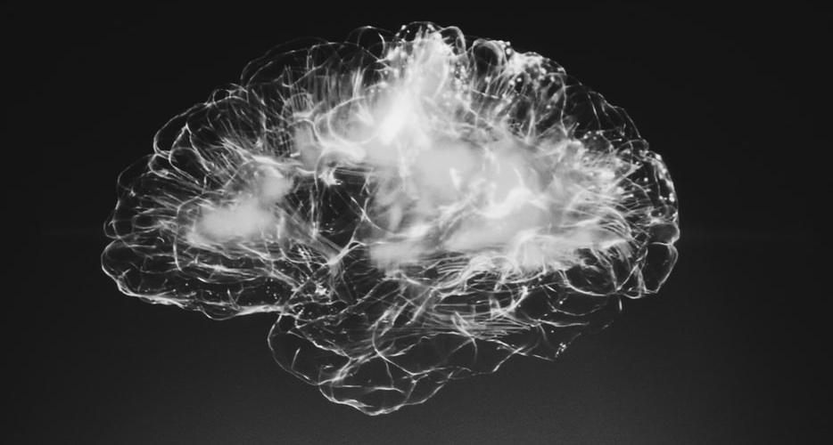 Этой осенью состоится масштабное мероприятие посвещенное мозгу и мышлению Brain 2020 баннер
